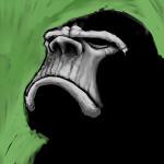Zdjęcie profilowe kamill